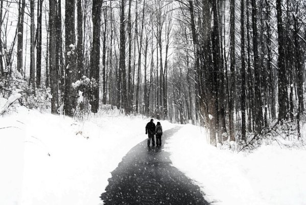 Walking Couple Snow