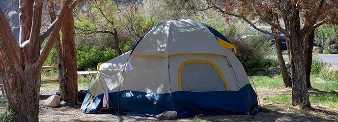 Big Bend Texas Chisos Basin Campground